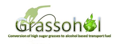 Grassohol