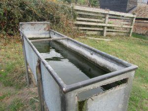 Water Trough, TalkingGrass