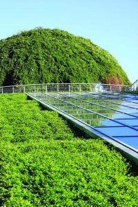 Green roof using VYDRO® foam