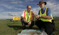 New varieties of grass stop birds lingering at the runway edge