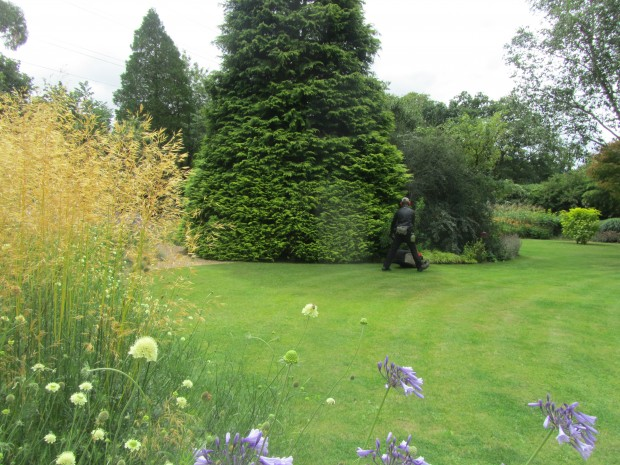 Cutting the grass at Knoll Gardens in July
