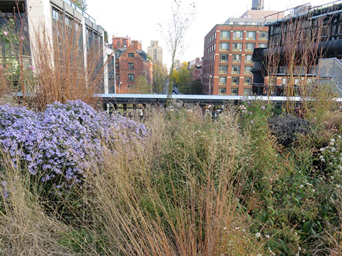 Walking the High Line!