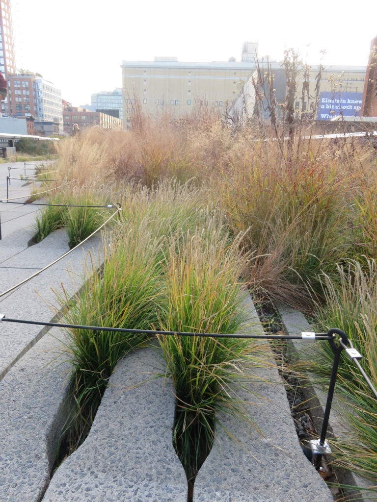 Clever feathered paving makes it look like the grasses are slowly coming out and taking over the concrete!