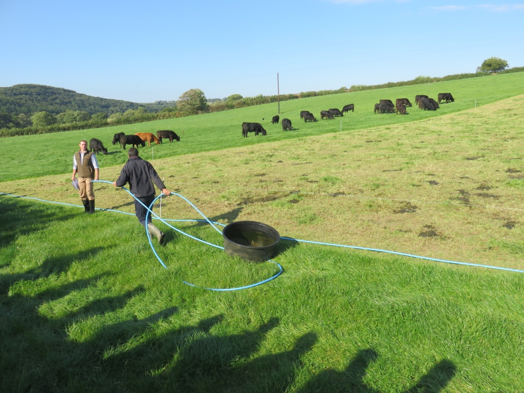 Moving the water trough to the next two days grazing
